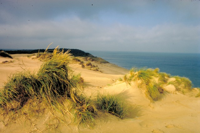 Sand dunes at Indiana Dunes National Lakeshore, Lake Michigan, Indiana - M. Woodbridge Williams
