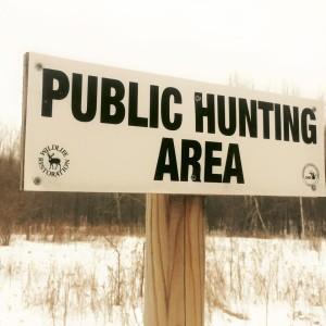 public hunting area MI